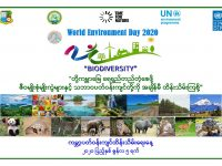WED 2020 poster_with UNDP